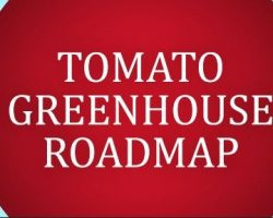 New Release: Tomato Greenhouse Roadmap