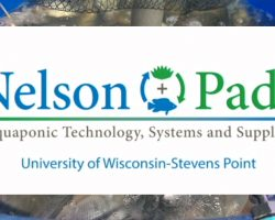 UWSP Introduction to Aquaponics Course