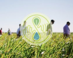 4th Annual Seedstock Sustainable Agriculture Conference