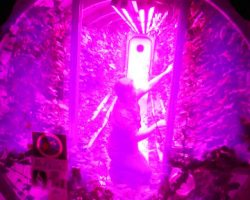 Study Finds Philips LED Lights Provide Improved Energy Efficiency and Production for Growing Food Crops in Space