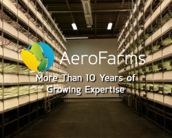 AeroFarms offers new level of safety and flavor for delicious, nutritious leafy greens