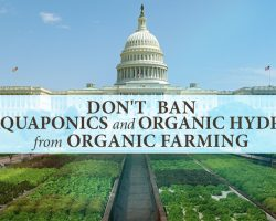 USDA: Don't Ban Aquaponics and Organic Hydro From Organic Farming