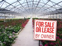 Greenhouse facility and over 19 acres in Mission, Texas for sale or lease