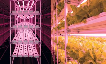 London 'Agritecture' sustainability workshop to feature HydroGarden's VydroFarm