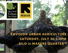 """Urban Agriculture Fair Celebrates Growing """"Hyper Local"""" Food Movement"""