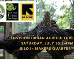 "Urban Agriculture Fair Celebrates Growing ""Hyper Local"" Food Movement"