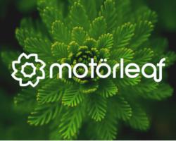 AgFunder Announces Motorleaf Raising Capital to Help Automate Indoor Farming