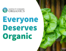 Organic Farmers Should Be Allowed to Grow Organic Produce in Containers, Consumers Overwhelmingly Agree