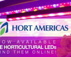 Hort Americas expands its lighting offerings