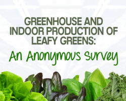 Greenhouse and Indoor Production of Leafy Greens: An Anonymous Survey