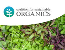 No changes to organic standards for containers, hydroponics and aquaponics