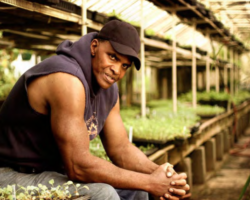 Growing Power:  An Urban Farmer and an Urban Agriculture Legend