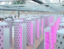 Aponix extended the NFT idea into the 3rd dimension with their vertical barrel