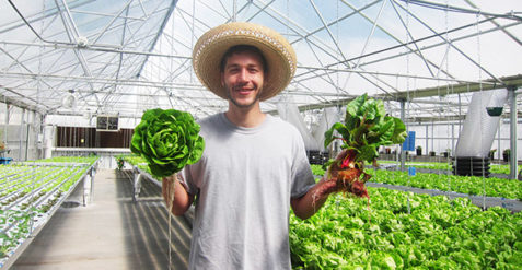 Getting serious about hydroponic vegetable production
