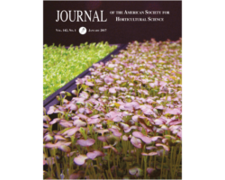 Using light to enhance the nutritional value of microgreens
