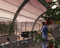 Not a Pipe Dream Anymore. Space-Farming: A Long Legacy Leading Us to Mars