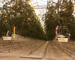 Urban Ag News attends high tech greenhouse opening