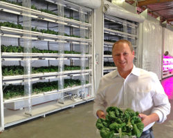 Vertical farm competes with conventional ag