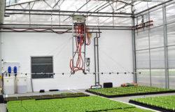 The nuances of crop fertilization