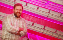 Taking a lean approach to vertical farming