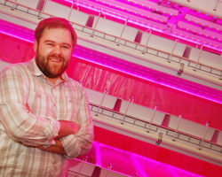 Taking a lean approach to vertical farming