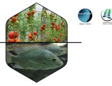 Aquaplanet conducting a Survey for USDA Risk Management