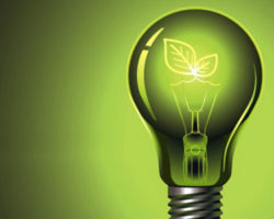 Green light is more useful to plants than you might think