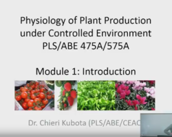 CEAC Greenhouse Plant Physiology and Technology Course – Week 1
