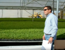 CEAC Greenhouse Plant Physiology and Technology Course – Week 6-2