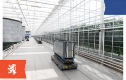 Dutch companies look to market their horticultural expertise