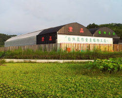Taiwan's plant factories focused on fast-growing crops with high yields, high economic value