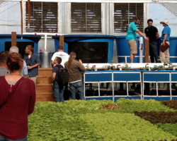 Full schedule now available for the Aquaponics Association 2017 Conference