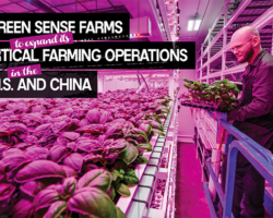 Green Sense Farms to expand its vertical farming operations in the U.S. and China