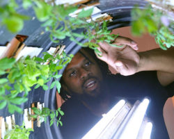 Duron Chavis is helping people eat and live healthier through urban agriculture