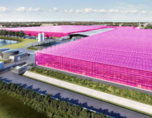 LumiGrow Partners with Nectar Farms to Light 40 Hectares of Greenhouse in Australia