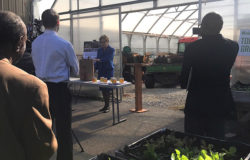 Urban Agriculture Production Act could help eliminate urban food deserts