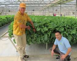 Organic Hydroponics with industry pioneer Michael Christian