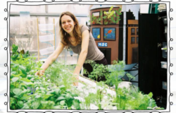 For hydroponic educator, innovation is a way of life