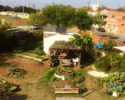 Urban Ag Zonings: Lessons from San Antonio